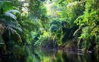 Alla scoperta del luogo dalla biodiversità più ampia del pianeta.